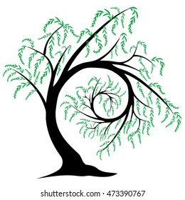 Vector illustration of a stylized willow tree spiraling in on itself