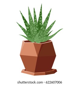 Vector illustration with succulent in geometric flowerpot isolated on background