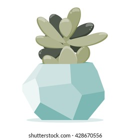 Vector illustration with succulent plant in geometric polygonal pot. Simple flat vector style.