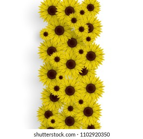 Vector illustration of sunflowers. 3D floral background. Spring print.