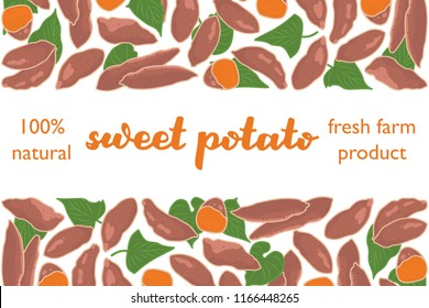 vector illustration of sweet potato and leaf design with lettering sweet potato background white and vegetable and text fresh farm product 100 percent natural EPS10