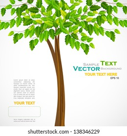 vector illustration of tall green tree