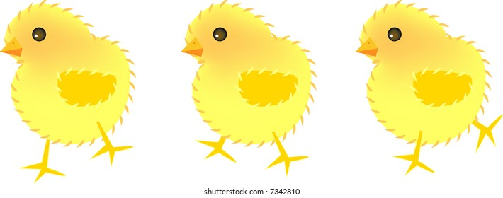 vector illustration for three chicks, movement, fun and cute