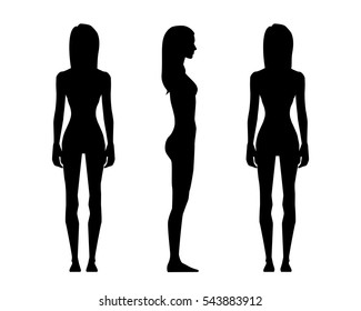 81f99dbc5 Vector illustration of three girl silhouettes on the white  background.Vector cartoon realistic people illustration. human body anatomy  ...