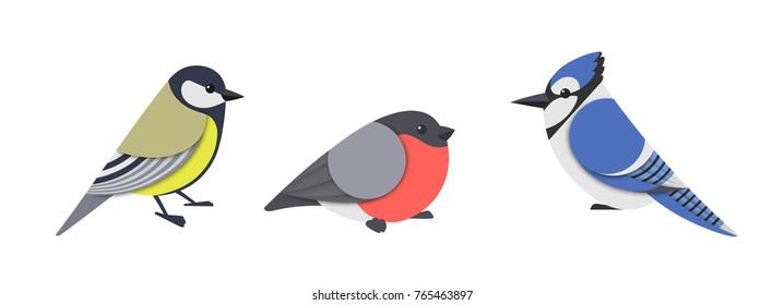 Vector illustration of titmouse, bullfinch and blue jay.