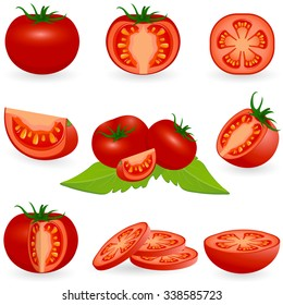 Vector illustration of tomato isolated on white