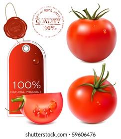 Vector illustration. Tomatoes.