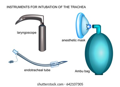 vector illustration tools for endotracheal intubation