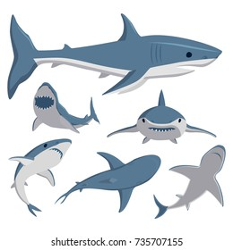 Vector illustration toothy swimming angry shark animal sea fish character underwater cute marine wildlife mascot.