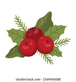 Vector illustration of traditional Christmas mistletoe branch. Classic holiday decoration.
