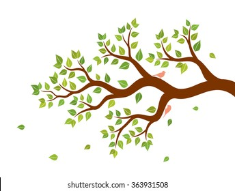 Vector illustration of tree branch with green leaves and two birds on white background. Wall sticker.
