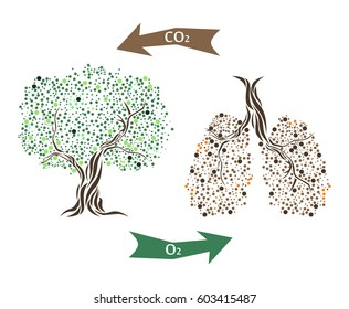 Vector illustration with tree and lungs