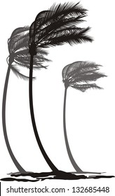 vector illustration of tree palms in the wind