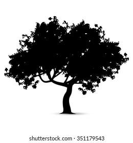 Vector Illustration : Tree silhouette