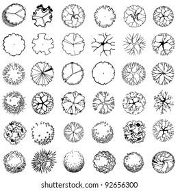 Vektorgrafik von Baumsilhouettes