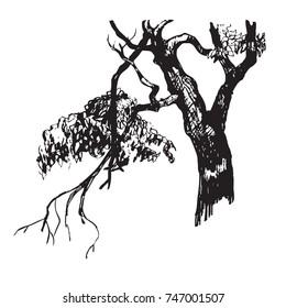 vector illustration of a tree trunk