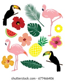 vector illustration of tropical elements, birds, leaves, pineapples, flowers.
