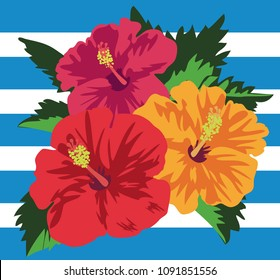 Vector illustration of tropical hibiscus flowers with leaves - blue border background