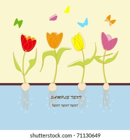 vector illustration tulip flower