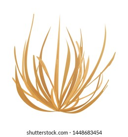 Vector illustration of tumbleweed and dry symbol. Set of tumbleweed and valley stock symbol for web.