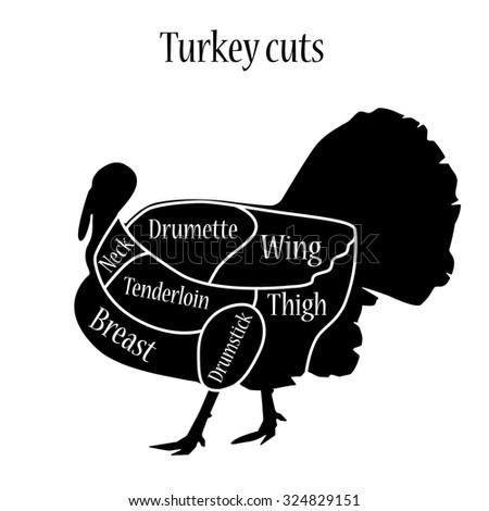 Turkey Cuts Diagram Car Wiring Diagrams Explained