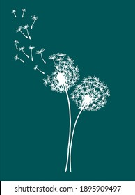Vector illustration of two dandelions doodles on green background. EPS10 for logos or labels, postcards, stickers, posters etc