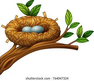 Vector illustration of Two eggs in bird nest