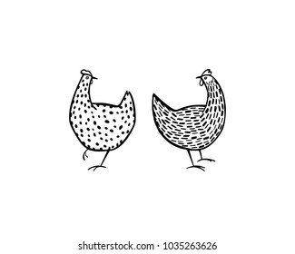 Vector illustration of two hand drawn chickens. Beautiful ink drawing, heavy contour, abstract design elements. Perfect elements for food or farming design.