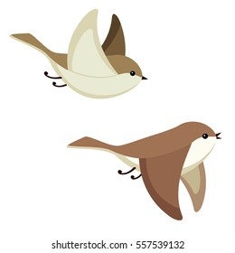 Vector illustration of two little flying birds isolated on white background