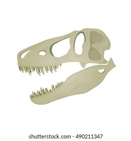 Vector illustration of Tyrannosaurus Rex skull.