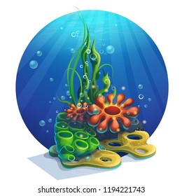 Vector illustration underwater algae. Bright image to create original video or web games, graphic design, screen savers.