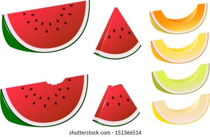 Vector illustration of various melon slices.