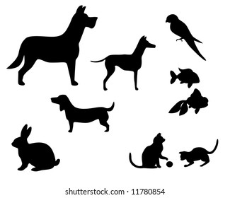 vector illustration of various pets silhouettes
