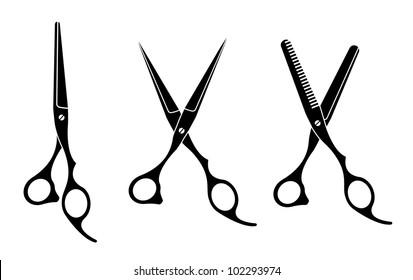 Vector illustration of  various professional barber Scissors