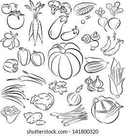 vector illustration of  vegetables collection in line art