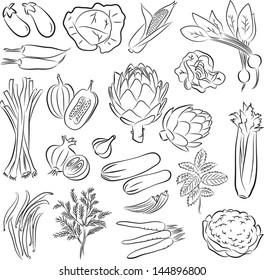 Vector Illustration of vegetables in line art