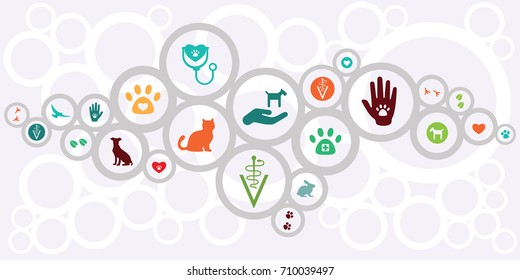 vector illustration of veterinarian symbols for horizontal banner with abstract circles scheme