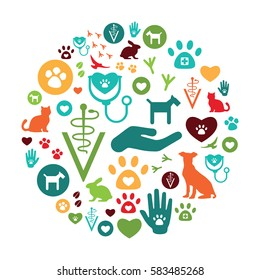 vector illustration of veterinary icons for pet service and care in circle shape design