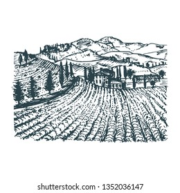 Vector illustration of vineyard. Hand sketch of villa, homestead in fields and hills. Drawn mediterranean landscape with rural farm for label, poster etc.