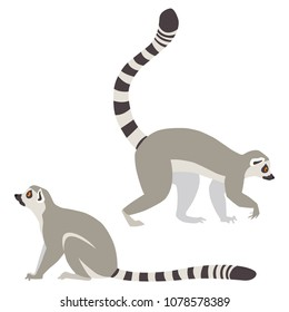 Vector illustration of walking and sitting lemurs isolated on white background