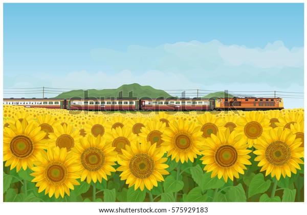 ベクターイラスト タイ風に見えないディーゼル機関車が率いる壁紙と背景に風景にひまわりの庭と列車の旅 のベクター画像素材 ロイヤリティフリー