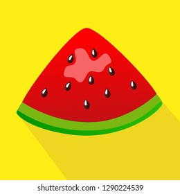 vector illustration of a watermelon on a phot with a shadow
