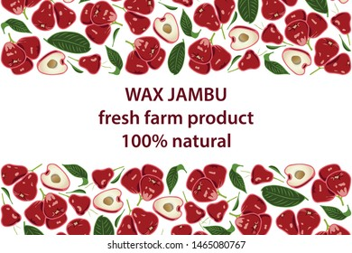 vector illustration of wax apple and leaf design background white and fruit and text wax jambu fresh farm product 100% natural EPS10