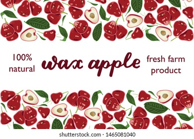 vector illustration of wax apple and leaf design with lettering wax apple background white and fruit and text fresh farm product 100% natural EPS10
