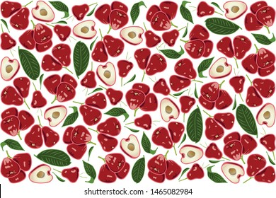 vector illustration of wax apple and leaf design background white and fruit EPS10