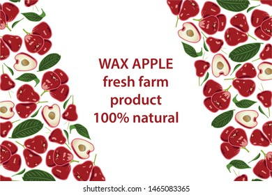 vector illustration of wax apple and leaf design background white and fruit and text wax apple fresh farm product 100% natural EPS10