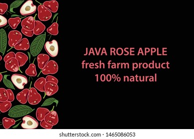 vector illustration of wax apple and leaf design background black and fruit and text java rose apple fresh farm product 100% natural EPS10