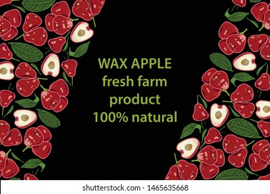 vector illustration of wax apple and leaf design background black and fruit and text fresh farm product 100% natural EPS10
