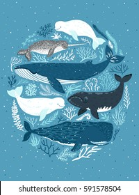 Vector illustration with whales. Beautiful poster with marine mammals. Card with sea animals.