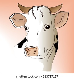Vector illustration of a white cow. It can be used on the packaging or for the children's book